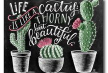 milujme kaktusi