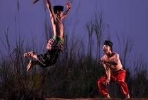 Budaya Nusantara