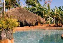 Experiential Goa / Look beyond beaches and parties and you will find some wonderful sights and sounds in Goa. Colonial bungalows, homes with Portuguese style architecture, warm hospitable Goan locals and of course, great food!