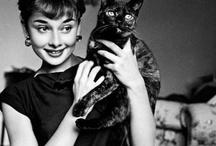 AUDREY / Audrey Hepburn  / by Amy Lehman