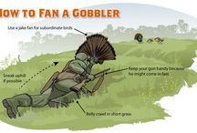 Turkey Hunting Tips / New tips, tactics, strategies and information for turkey hunters across America. Entertaining wild turkey hunting video clips. Great gobbling action. / by Realtree
