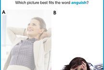 Picture Vocabulary - Answers / Answers to our Picture Vocabulary questions.