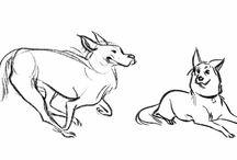 REF||animals||