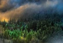 doğa fotoğrafları
