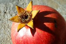 pomegranates from the garden / the kings of the garden... and persimmons from home~