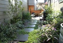 Ideas for my Garden / by Kimberly B.