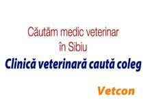 Locuri de munca / locuri de munca domeniul veterinar