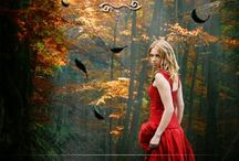 The Library / by Shelley Conyers