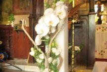 Wedding driftwood / thalassoksila.blogspot.com