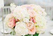 Ivy's Wedding**