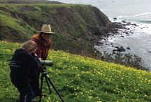Marine Ecology Program / Fort Ross Conservancy's Marine Ecology Program, a wonderful educational youth overnight or single day field trip to Fort Ross.  More info at http://www.fortross.org/marine-ecology.htm