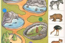 Zoo - Program Ideas