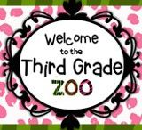The Third Grade Zoo Blog Posts