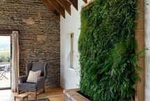 LANDSCAPE INTERIOR IDEAS