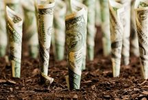 Money doesn´t grow on trees... / It grows from the ground up