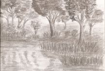 Draws nature and landscape / Draws nature and landscape - pencil