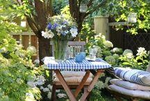 Spring in the garden // Vår i hagen