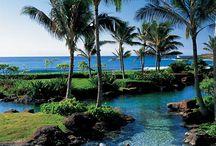 Hawaii / Dream vacation