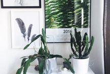 Margo.Hupert.Art Botanical Art / www.margohupert.pl____________________________ instagram @margo.hupert.art________________  botanic prints  #botanic #botanical #print #art #drawn #sketch #plants #urbanjungle