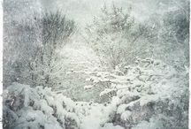hiver/ Winter/ winter