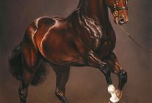 Horses paintings oil