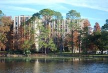 Miller Hall / Miller Hall is an all girls Residential Hall. / by LSU Residential Life