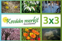 Ympäristö/ Vuodenajat; Kevät
