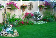 Casă şi grădină ❤