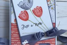 Tranquil Tulips