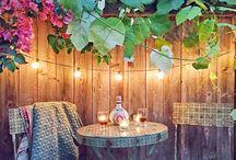 Beach House Garden / Outdoor spaces that wow!