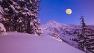 Moon / by Irene Reines
