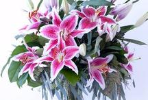 flowers orientals