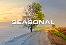 Seasonal / by Free Country