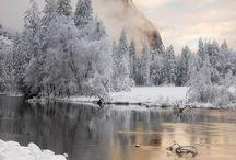 Winter Wonderland / by Gracy Lotter (Taylor)