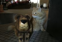 The Adventures of Bella & Bonnie / Our cat Bella with her new friend Bonnie the Bear .. A beautiful natural wood hand crafted chainsaw art bear from #mountaintimberdecor @bellamianaturals