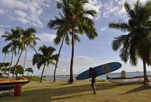 SURF / Surf world