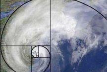 Fibonacci / The magical fibonacci spiral