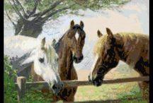 Cross-stitch---Horses