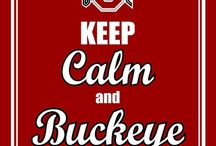 Man Cave  Go Bucks  / by Melinda Shroyer