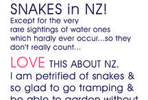 YOUR FAVOURITE ~ NZ THING / If you had to choose just one or two things you really like about NZ right now, what would you choose?  (Two things allowed per month per person, to keep it interesting so we  can think hard about what we really LOVE!). If you are in NZ & want to be added comment on a pin 'add me please'