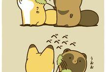 zorro y castor