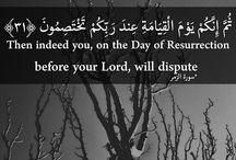 Quran quotes❤