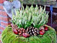 Natale in giardino