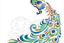 Tavus Kuşları