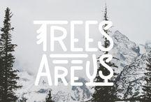 Treesareusblog / #nature #trees #humans #connection
