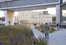 Landscapearchitekture