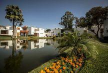 Naturaleza / Disfruta la naturaleza con nuestros hermosos jardines, lagunas y fauna.