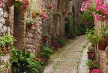 Around the World - Walkways and Flowered Windows