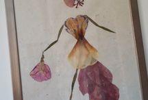 """""""Dames Nature """" par Julie Try / pétale de fleurs séchées et redessinées au féminin...."""
