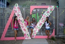 Delta Zeta Love  / Ever since my freshman year in high school I always wanted to be a sorority girl, Delta Zeta truly has my heart. I am not at a school with Delta Zeta and would love to fulfill my dream of one day being a Delta Zeta girl. More than anything in the world, I would like the oppertunity to be a Delta Zeta Lady, I would so much love to become an Alumna Initiate of this sorority more than anything in the world / by Monika McKemie